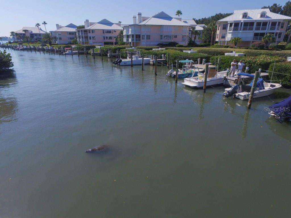 Enjoy the manatee in the marina - Condo for sale at 11000 Placida Rd #309, Placida, FL 33946 - MLS Number is D5921681