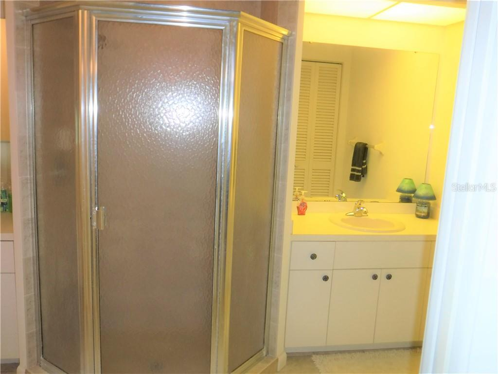 Dual vanities plus center shower in the master bath. - Single Family Home for sale at 3001 Pellam Blvd, Port Charlotte, FL 33948 - MLS Number is D6101282