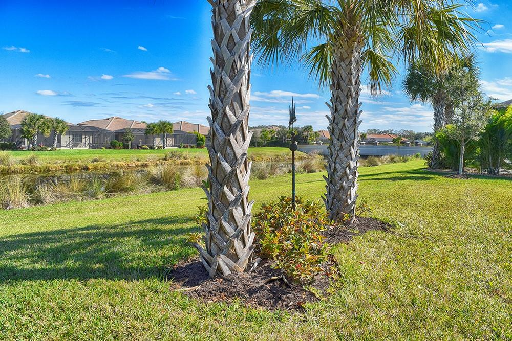 Single Family Home for sale at 11196 Whimbrel Ln, Sarasota, FL 34238 - MLS Number is A4471096