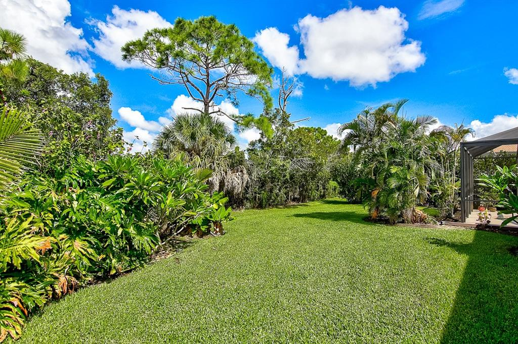 Yard - Single Family Home for sale at 1031 Scherer Way, Osprey, FL 34229 - MLS Number is N6111839